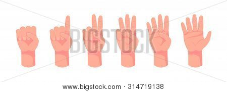 Hand Count. Flat Finger And Number Isolated On White Background. Vector Set Of Nonverbal Sign - Fist
