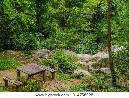 Wooden Picnic Table And Benches In Lush Green Forest At Head Of Hiking Trail.