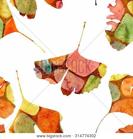 Ginkgo Biloba Leaf Pattern With Watercolor Stains, Double Exposure