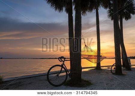 Palm Trees At Sunset In Siesta Key Beach, Sarasota, Florida