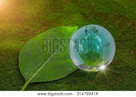 World Globe Crystal Glass On Green Lush Leaf On Floor With Moss And Reflect Shine. World Environment