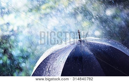 Rain And Wind On Black Umbrella - Weather Concept