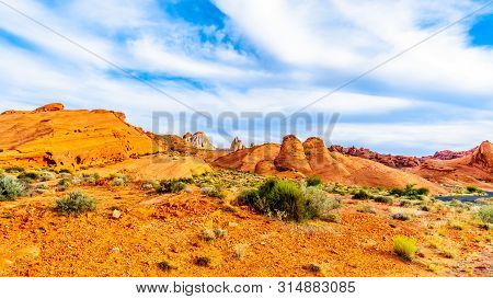 The Colorful Red, Yellow And White Sandstone Rock Formations On The White Dome Trail In The Valley O