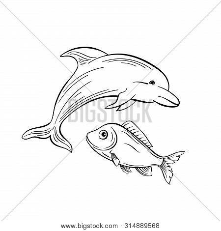 Dolphin And Fish Monochrome Flat Vector Illustration. Sea Animals, Intelligent Mammal Freehand Sketc
