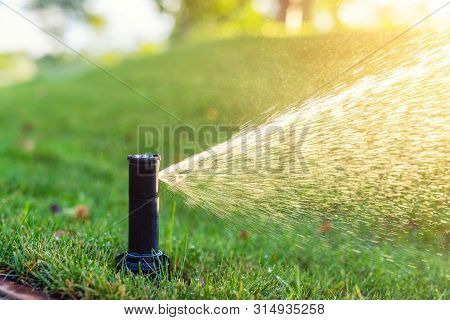 Close-up Automatic Garden Watering System With Different Sprinklers Installed Under Turf. Landscape
