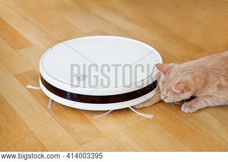 A White Robot Vacuum Cleaner And A Kitten That Plays With It. Vacuuming The Floor And Pets