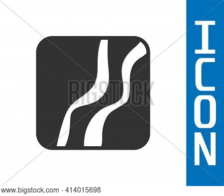 Grey Snake Paw Footprint Icon Isolated On White Background. Vector