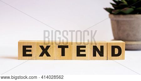 The Word Extend On Wooden Cubes On A Light Background Near A Flower In A Pot. Defocus