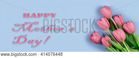 Pink Tulips Flowers On Blue Background. Card For Mothers Day. Flat Lay, Top View, Long Wide Banner.