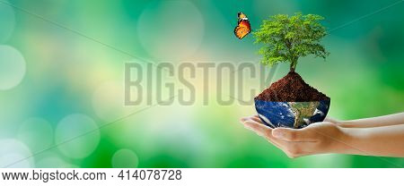 Growing Tree On Half Globe In Hand With Butterfly. Green Background With Bokeh. World Mental Health