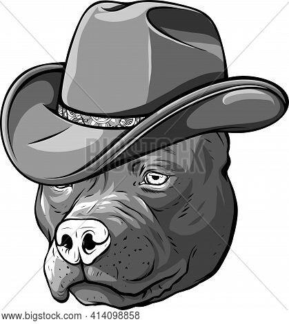 Design Of Gangster Pitbull With Fedora Hat Vector Illustration