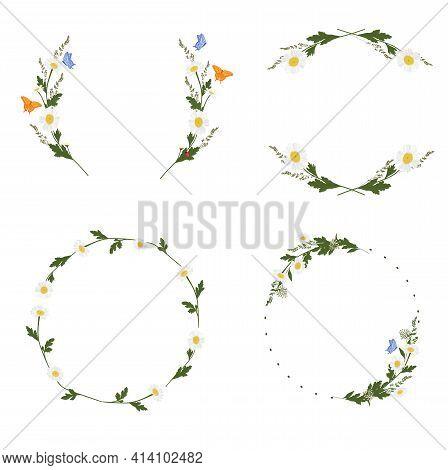 Daisy Wreath Set Vector Stock Illustration. Chamomile. A Vignette Of Meadow Flowers. Design For Invi