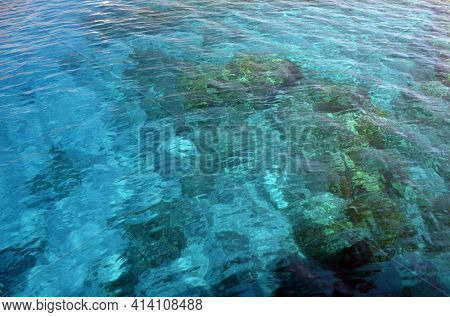 Coral reef in shallow water shines through the water of the Red Sea. Ecosystem and environment. Egypt. Near Sharm El Sheikh