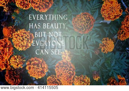 Motivational Quote On Blurred Background Of Flowers - Everything Has Beauty But Not Everyone Can See