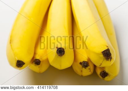 Bunch Of Bananas Isolated On White Background. Bunch Of Ripe Yellow Fresh Bananas