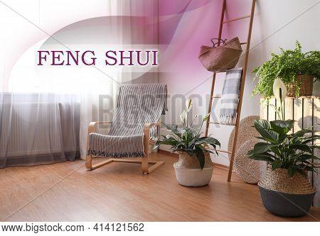 Beautiful Plants In Wicker Pots Near White Wall Indoors. Feng Shui Philosophy