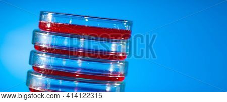 Pipette and petri dishes in science lab.  Petri dish with red substance
