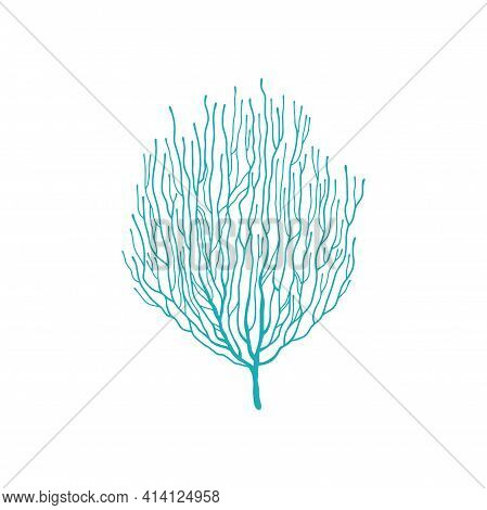 Soft Coral Blue Acropora Branch Isolated Icon. Vector Bubble Tip Anemone, Soft Pulsing Coral In Unde