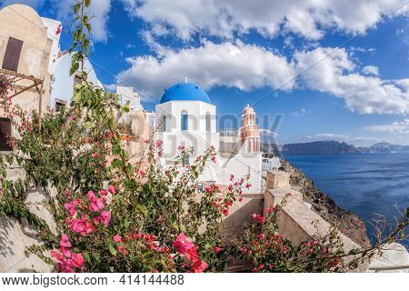 Oia Village With Churches Against Red Flowers On Santorini Island In Greece