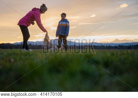 Young Woman Obedience Training Her Cute Small Dog Together With Her Son Outside In A Beautiful Meado
