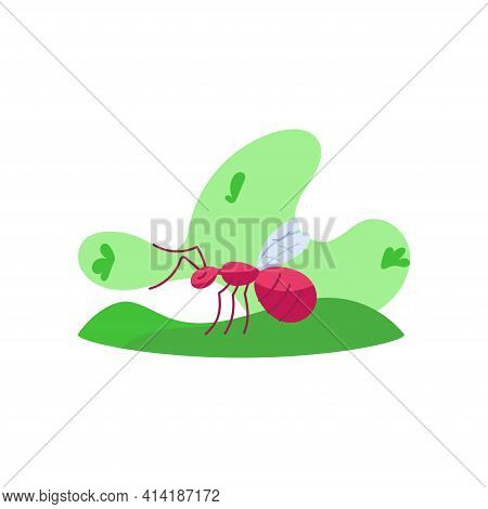 Isolated Big-ass Ant. Colombian Food - Vector Illustration