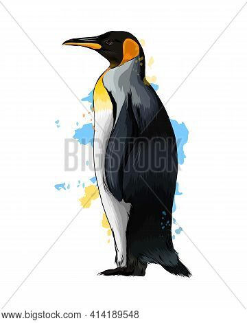 Emperor Penguin From A Splash Of Watercolor, Colored Drawing, Realistic