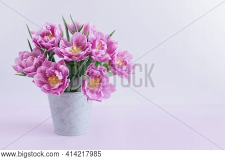 Tender Violet Tulips In A Vintage Pot On A Pastel Violet Background. Greeting Card For Women's Day.