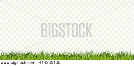 Grass Border Seamless, Green Tufts Plants Horizontal Row. Vector