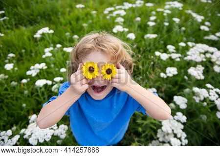 Funny Boy Kid And Daisies. Happy Little Blond Hair Child With Flowers Eyes Laying On The Grass With