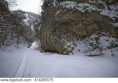 Winter Landscape In Zarnesti Gorges (the Precipice Of Zarnesti), Romanian Carpathians