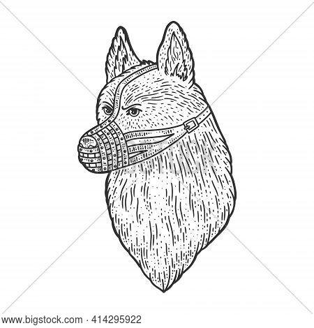 Muzzled Dog Shepherd Sketch Engraving Vector Illustration. T-shirt Apparel Print Design. Scratch Boa