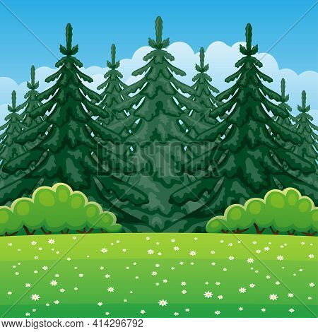 Illustration Of Summer Nature With Coniferous Forest.