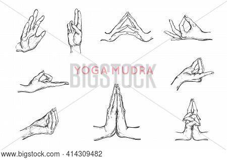 Vector Hand Drawn Set Of Hands In Mudras. Yoga. Spirituality Set