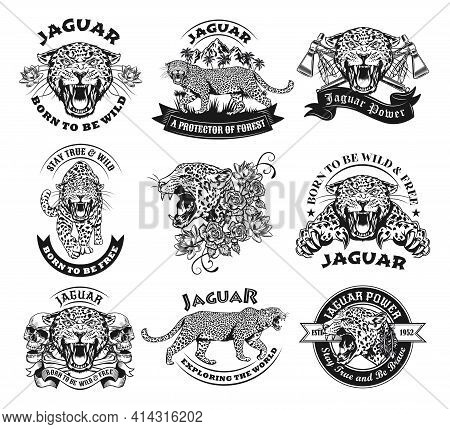 Monochrome Labels With Jaguar Vector Illustration Set. Retro Tattoo Design With Wild Leopard. Wildli