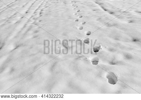 Abstract Human Footprints On A White Snowdrift For Natural Background
