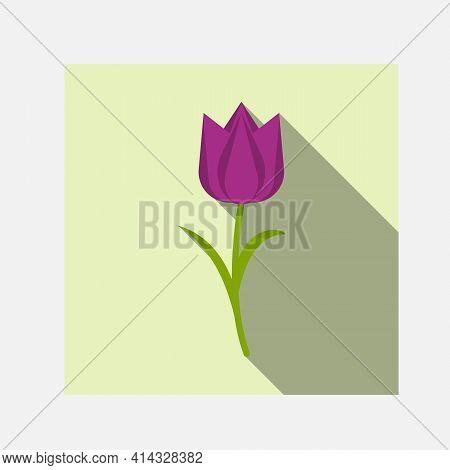 Tulip Vector. Purple Tulip. Tulips. Flat Icon Of Tulip. Vector Illustration.