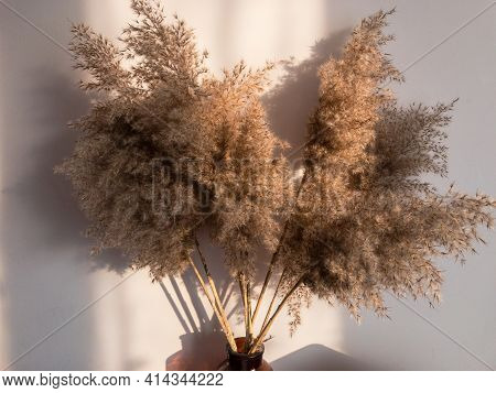 Dry Reeds In A Stylish Vintage Vase Jar On A Wall Background, Selective Focus