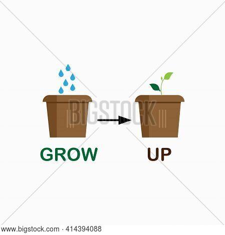 Illustration Plant Grow Up On Pot. Plant Grow Up Design Logo Vector