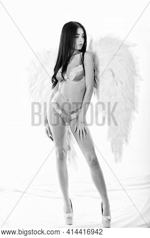 Girl Wear Luxury Lingerie And Angel Wings Accessory. Erotic Angel. Desirable And Tempting Lady. Impr