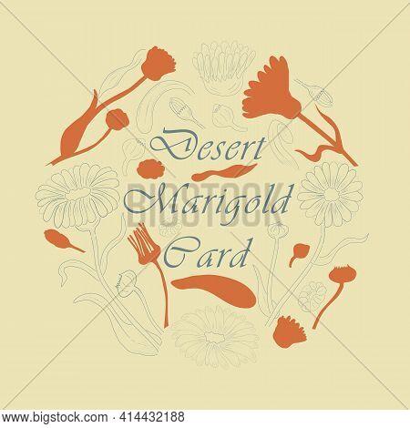 Desert Marigold Parts Making Circle Composition. Hand Drawn Contour And Filled Calendula Parts Neatl