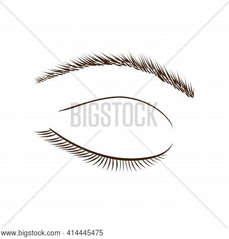 Fashionable vector illustration. Image of closed eyes with lashes and eyebrows on a white background.