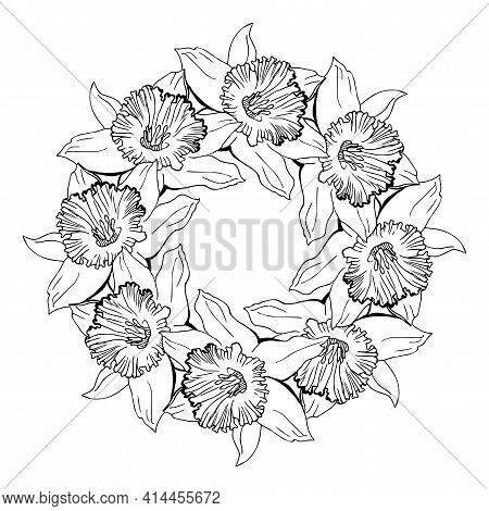 Floral Circle Wreath With Hand Drawn Outline Flowers Narcissus, Daffodils. Black And White Vector Fl