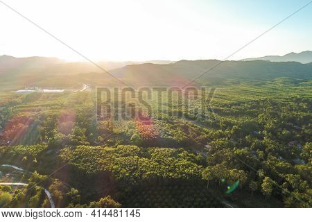 Aerial View Mountain Forest With River Sunny Day