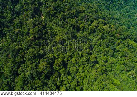 Aerial View Tropical Green Mountain Forest