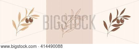 Set Of Modern Abstract Aesthetic Isolated Olive Branch In Boho Style. Terracotta Soft Pastel Colors.