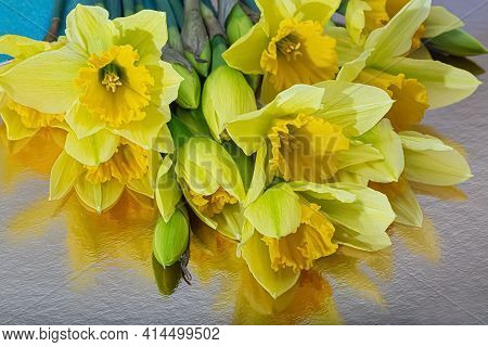 Top View Of Yellow Daffodils And Buds In Lighting. Flowers Daffodils On A Reflective Surface. Blurre