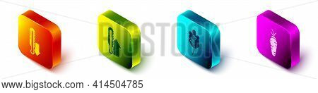 Set Isometric Meteorology Thermometer, Meteorology Thermometer, Leaf Or Leaves And Carrot Icon. Vect