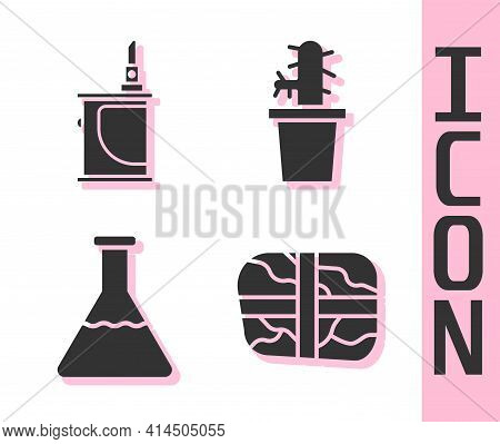 Set Package With Cocaine, Electronic Cigarette, Test Tube And Flask And Cactus Peyote In Pot Icon. V