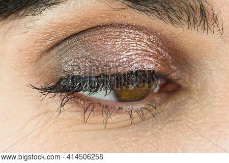 Female Eye With Lush Eyelashes Makeup Eyelids, Close-up.