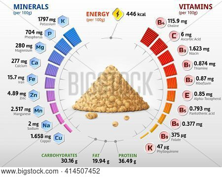 Vitamins And Minerals Of Raw Soybeans. Infographics About Nutrients In Mature Soy Grain. Vector Illu